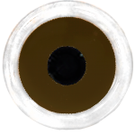 RPG_Scleral_Brown_Pupil300